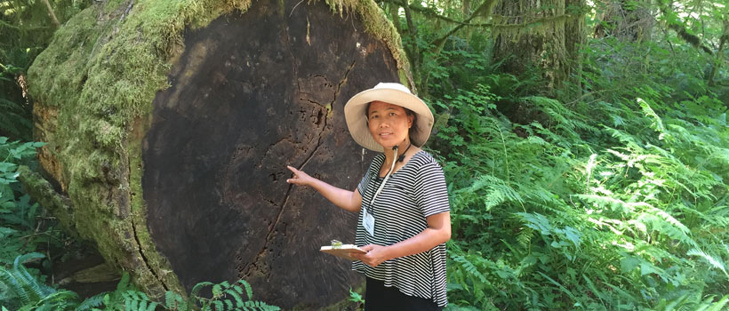 Sarita and the log