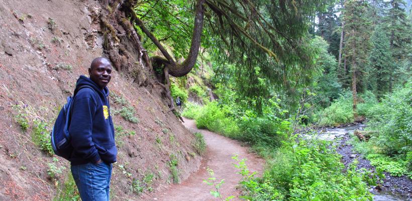 da36ea43e15651 Apply for an WFI International Fellowship - World Forestry Center