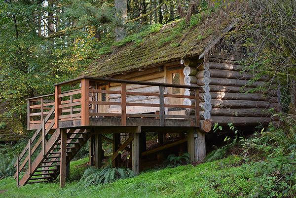 Bunkhouse Cabin