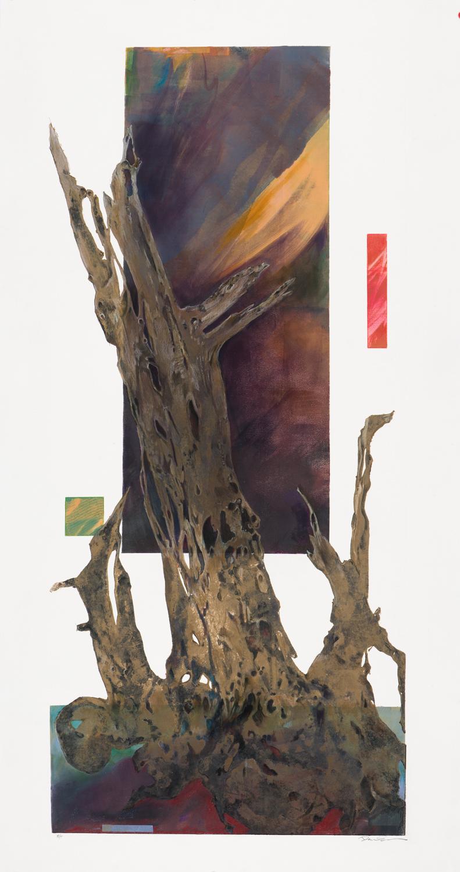 aurora-tree-light2x5 - World Forestry Center