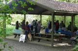 Large Picnic Shelter
