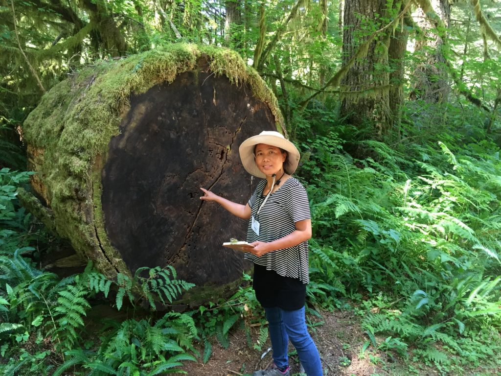 An International Fellow points to a fallen tree.