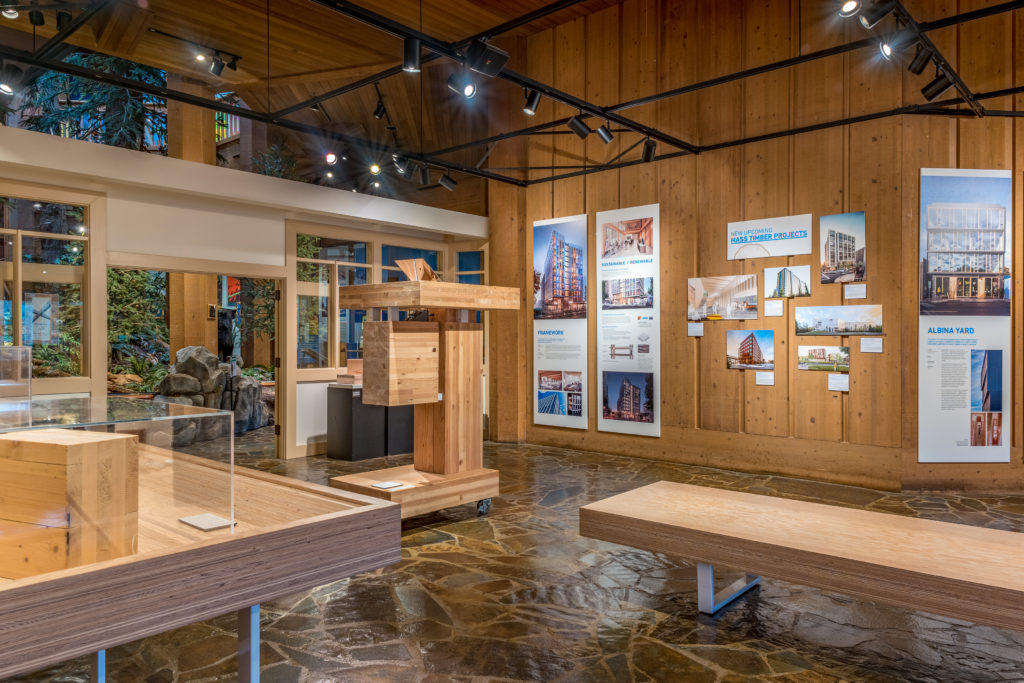 Cross laminated timber exhibit pieces in the museum
