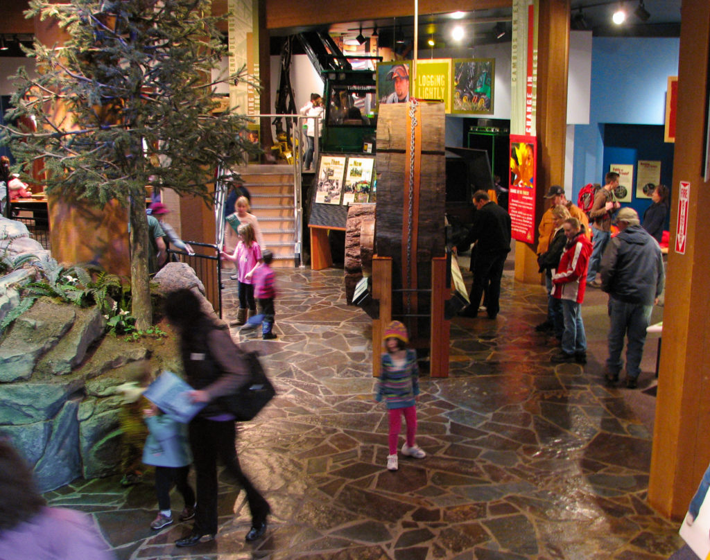 Inside of the museum, a crowd gathers around displays of forestry. trees and logs are highlighted exhibits.
