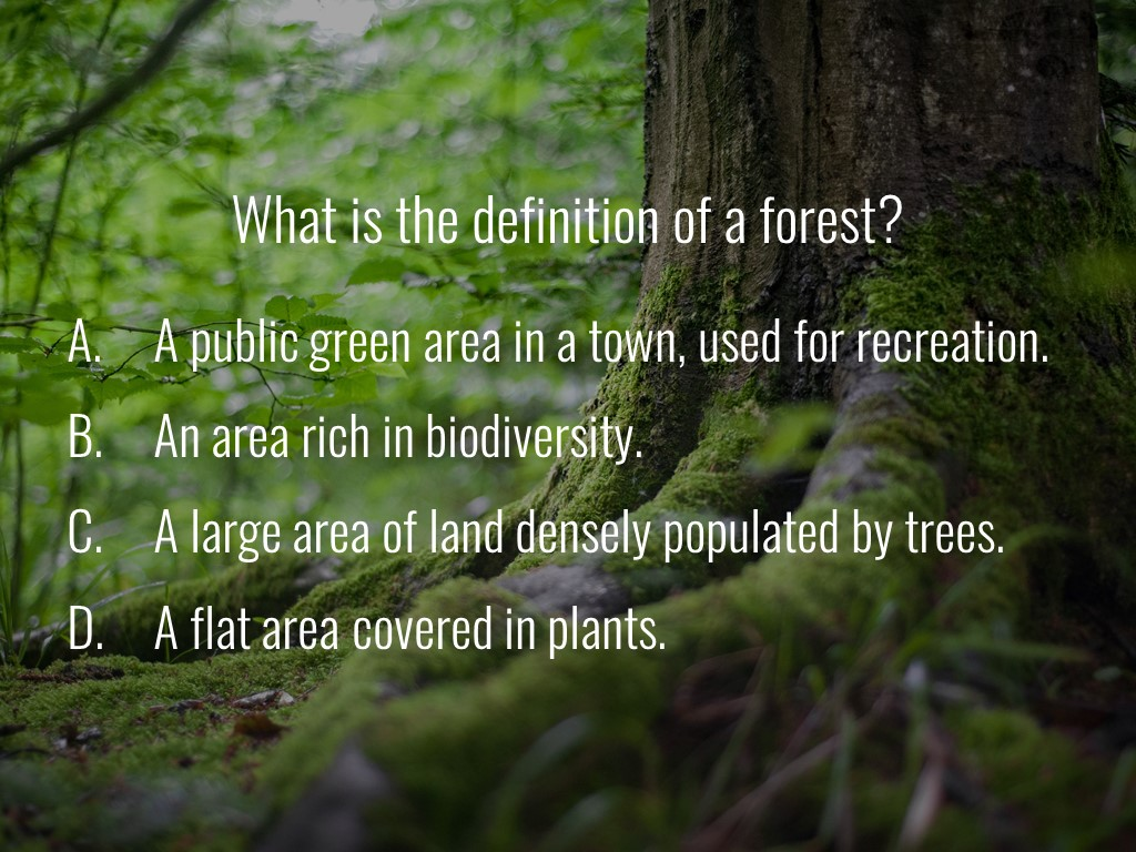 World Forestry Center_Forest Quiz_Slide1