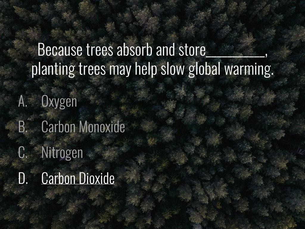 World Forestry Center_Forest Quiz_Slide12