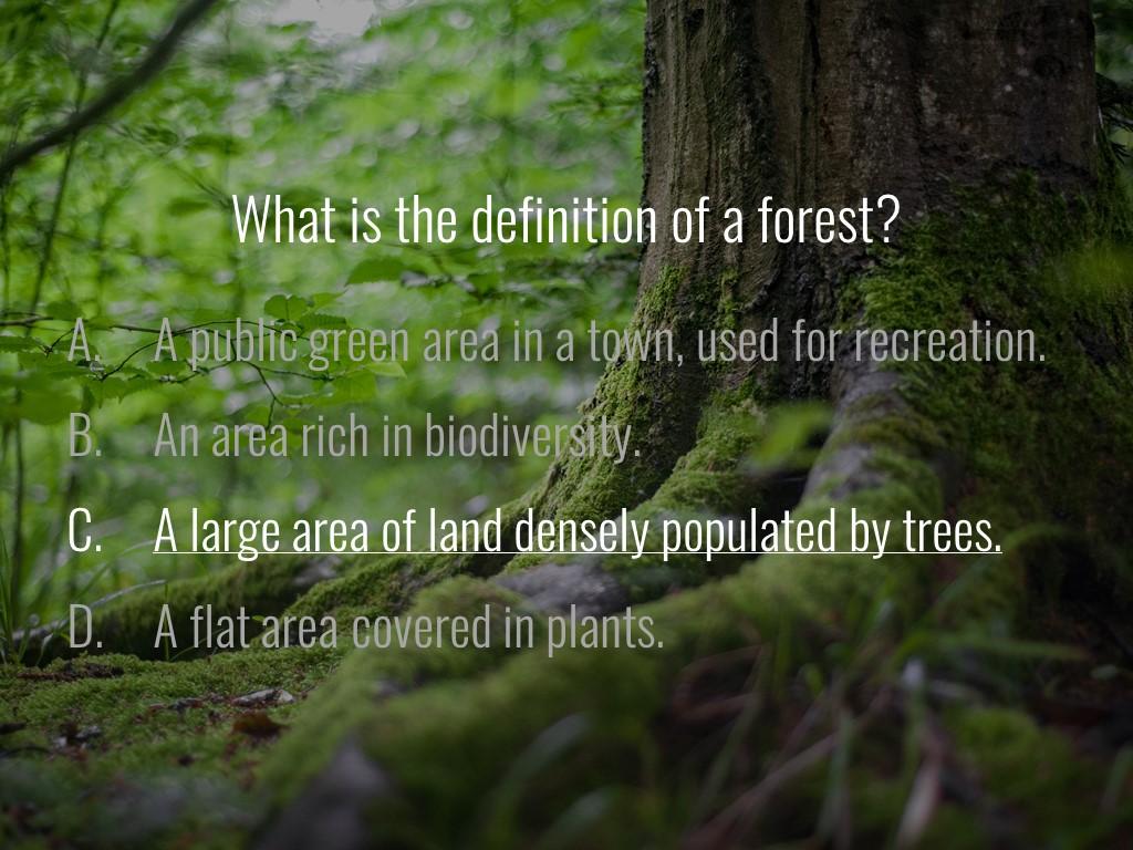 World Forestry Center_Forest Quiz_Slide2