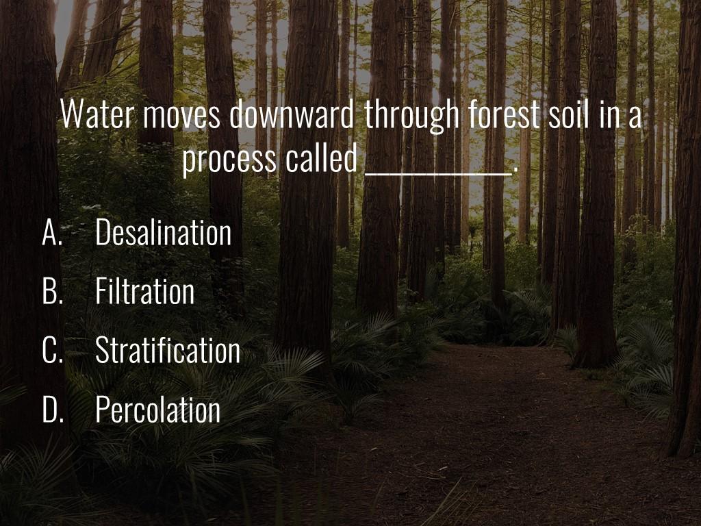 World Forestry Center_Forest Quiz_Slide25