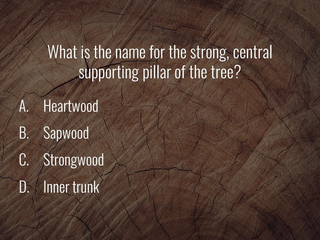 World Forestry Center_Forest Quiz_Slide29