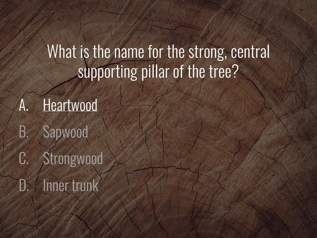 World Forestry Center_Forest Quiz_Slide30