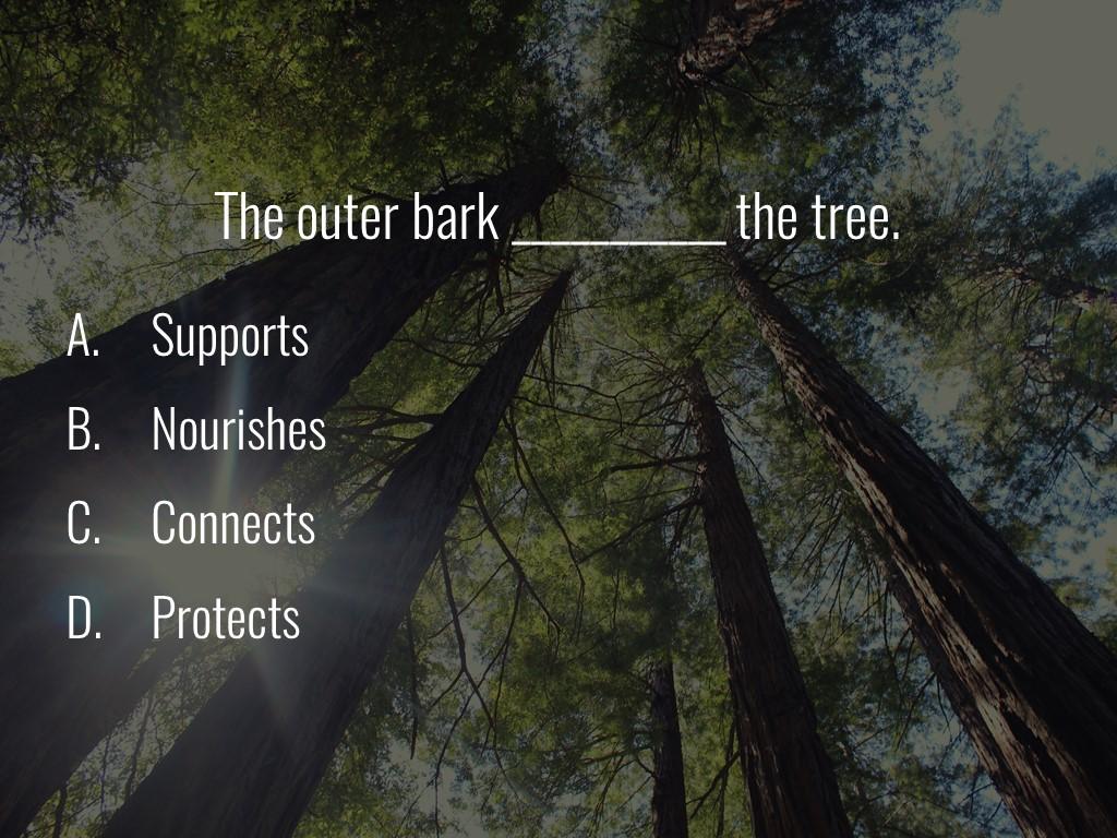 World Forestry Center_Forest Quiz_Slide37