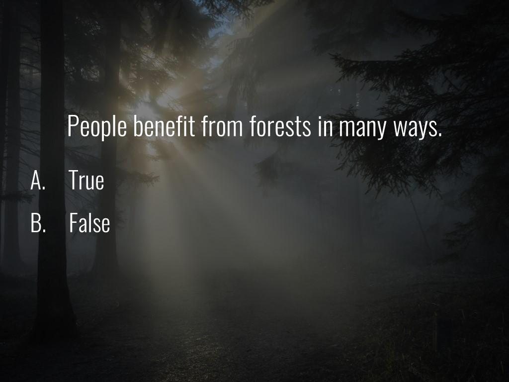World Forestry Center_Forest Quiz_Slide39