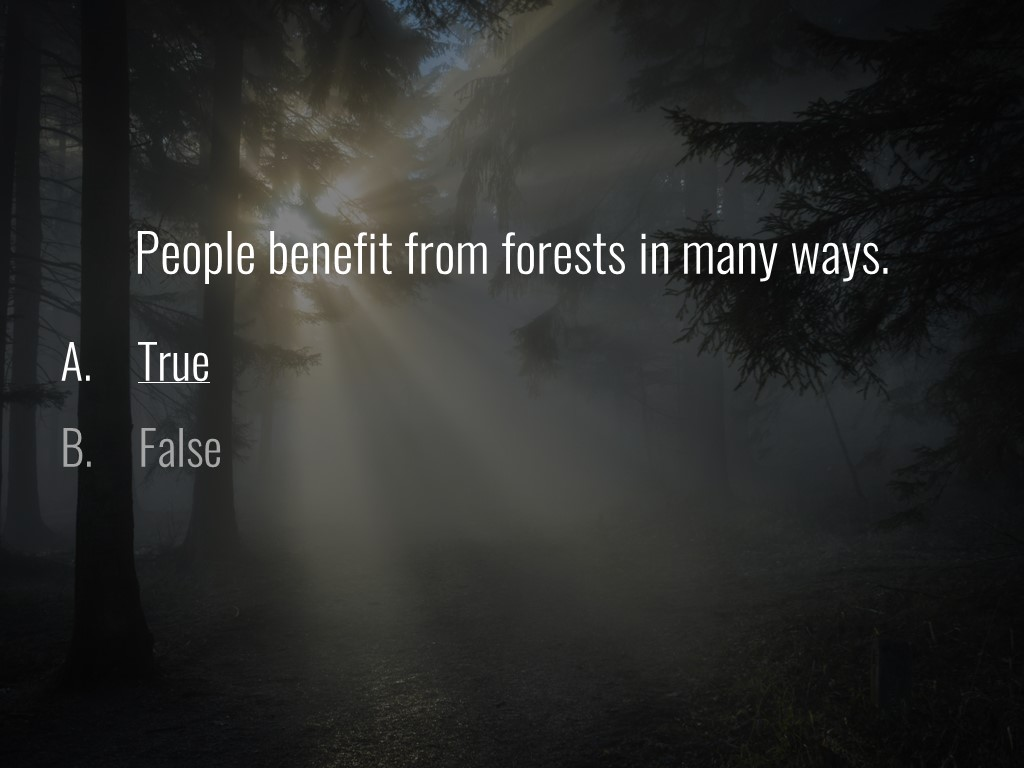 World Forestry Center_Forest Quiz_Slide40