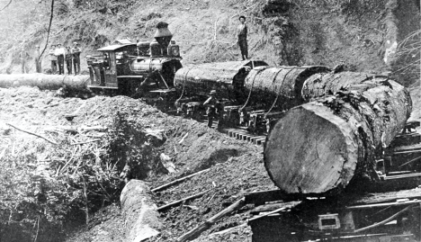 Trains pulling logs on the 1800s railroad.
